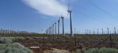 Rising Tree Wind Farm