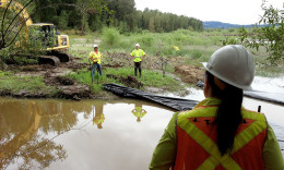 Sandy River Delta Dam Removal